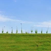 神奈川県鎌倉市の建築家が書いたブログです