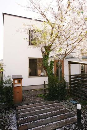 桜の木を残した外観